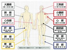 f:id:sohachiacupuncture:20180706105004j:plain