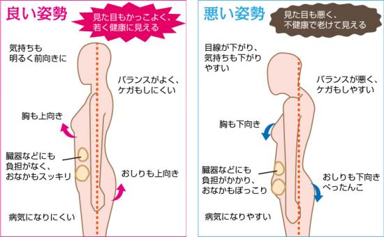 f:id:sohachiacupuncture:20180710094040p:plain