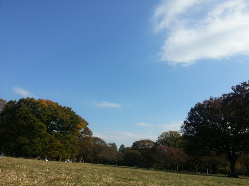 f:id:sohhoshikawa:20141111110915j:plain
