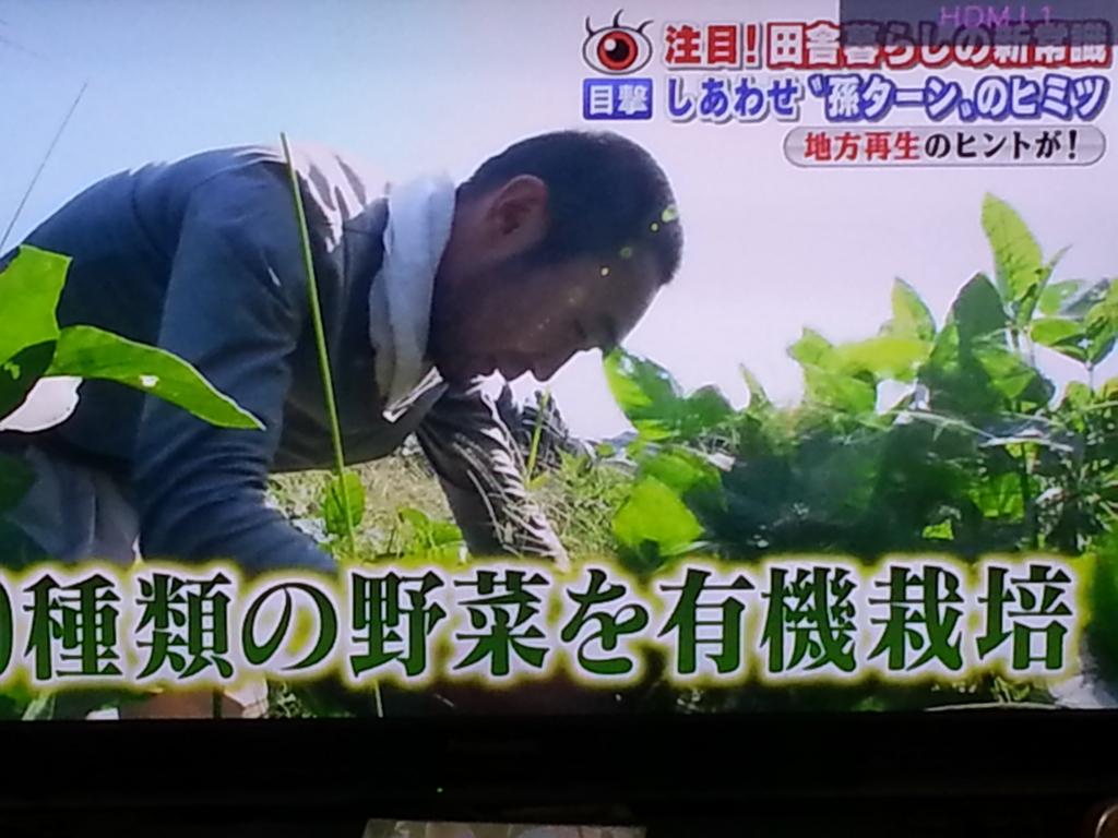 f:id:sohhoshikawa:20151015170253j:plain