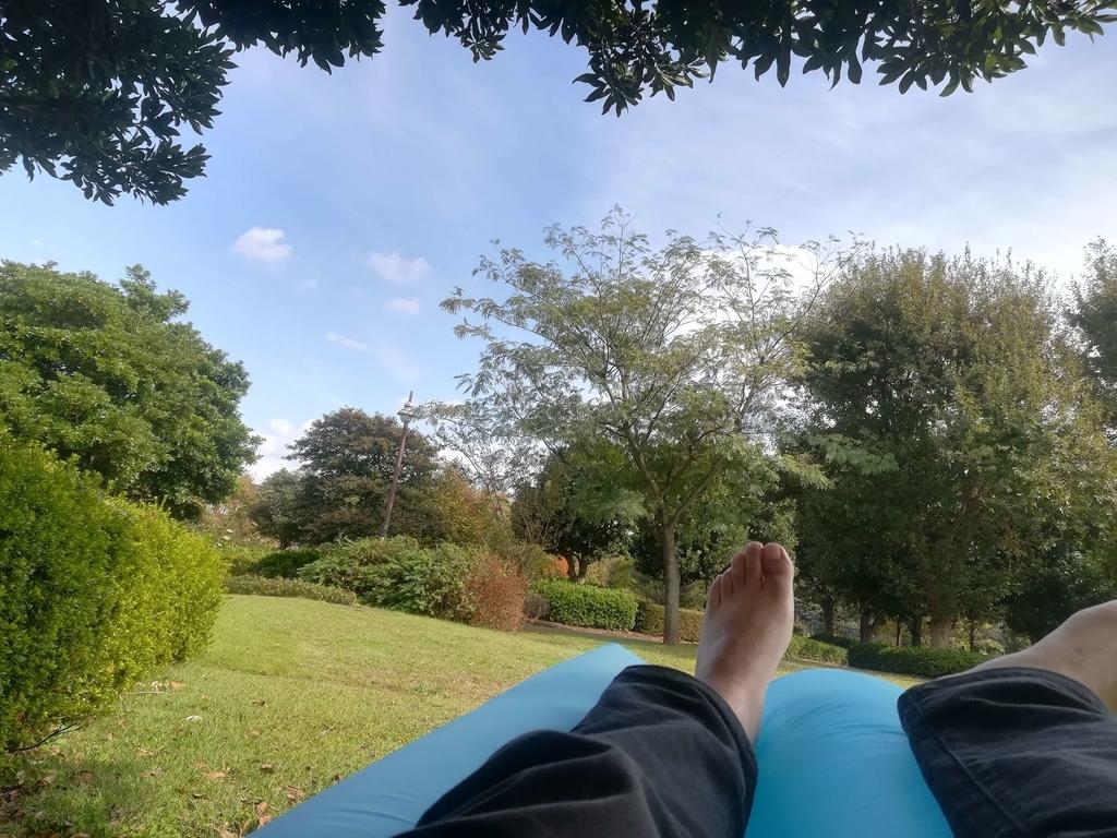 公園で寝そべる