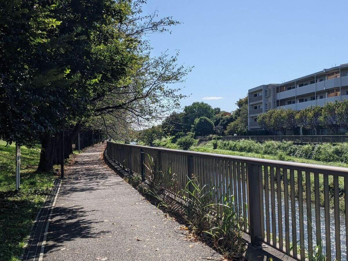 狛江の野川沿いの歩道