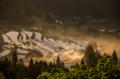 『京都新聞写真コンテスト 黎明』