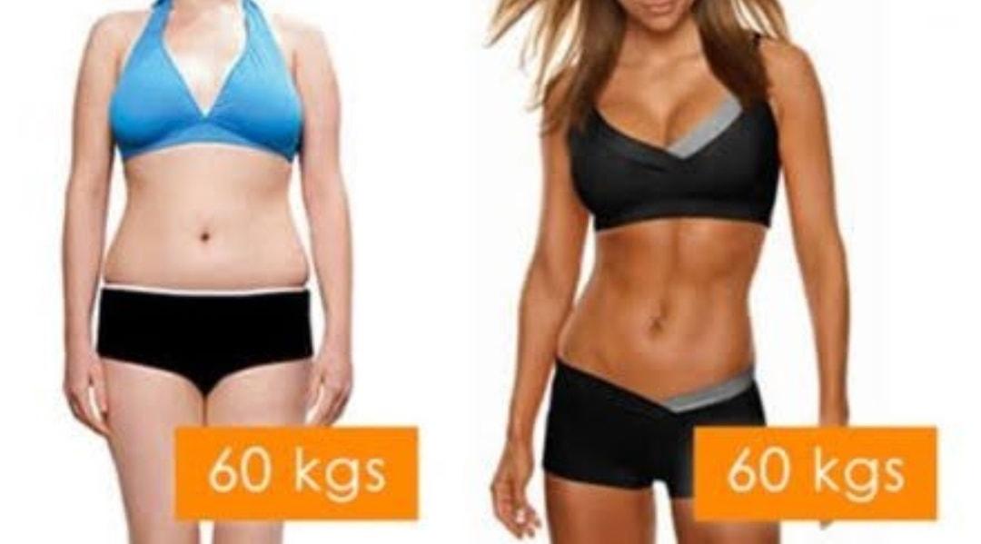 体重と体脂肪の比較