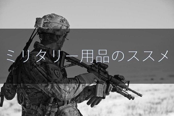 f:id:sokonukikuri:20170530221336j:plain