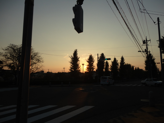 f:id:sokotujii:20100102191230j:plain