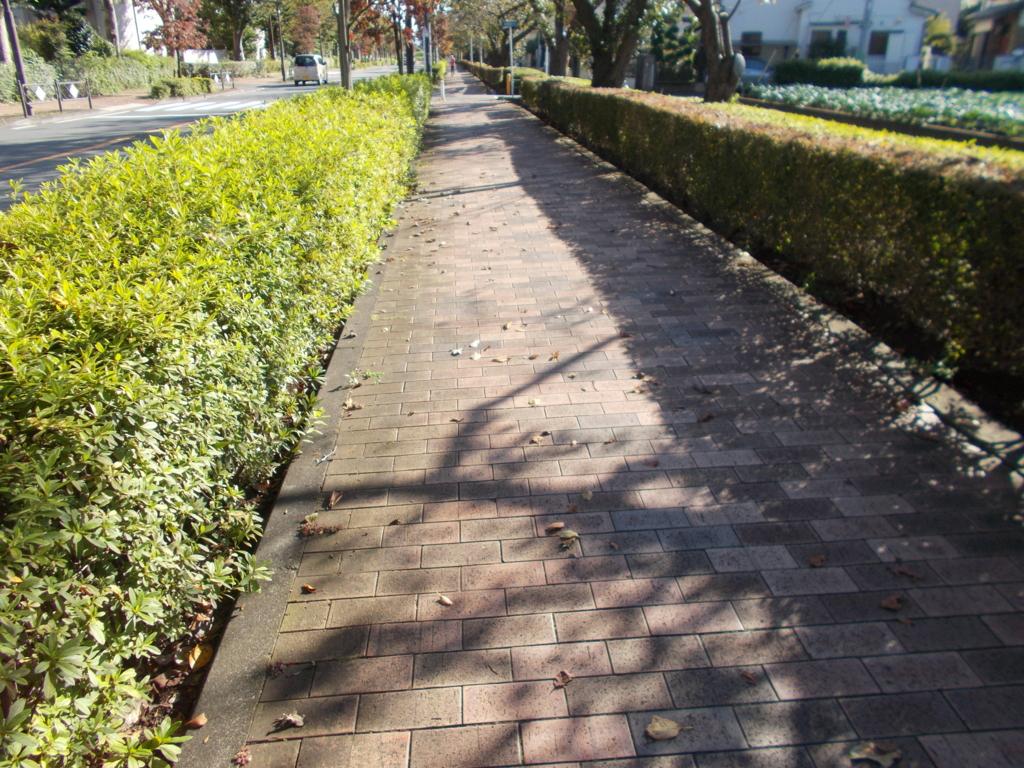 f:id:sokotujii:20161026135911j:plain