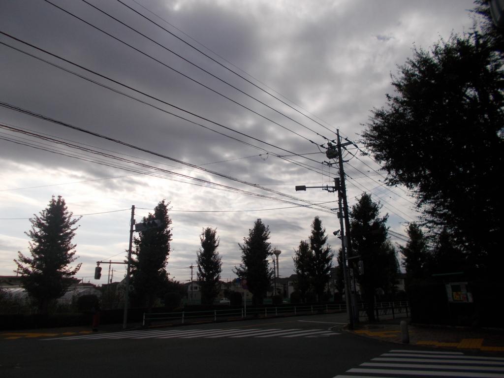 f:id:sokotujii:20161027141405j:plain