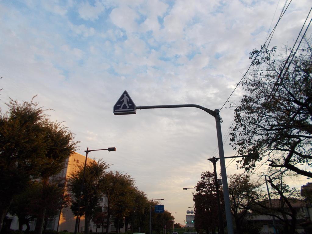 f:id:sokotujii:20161031162434j:plain