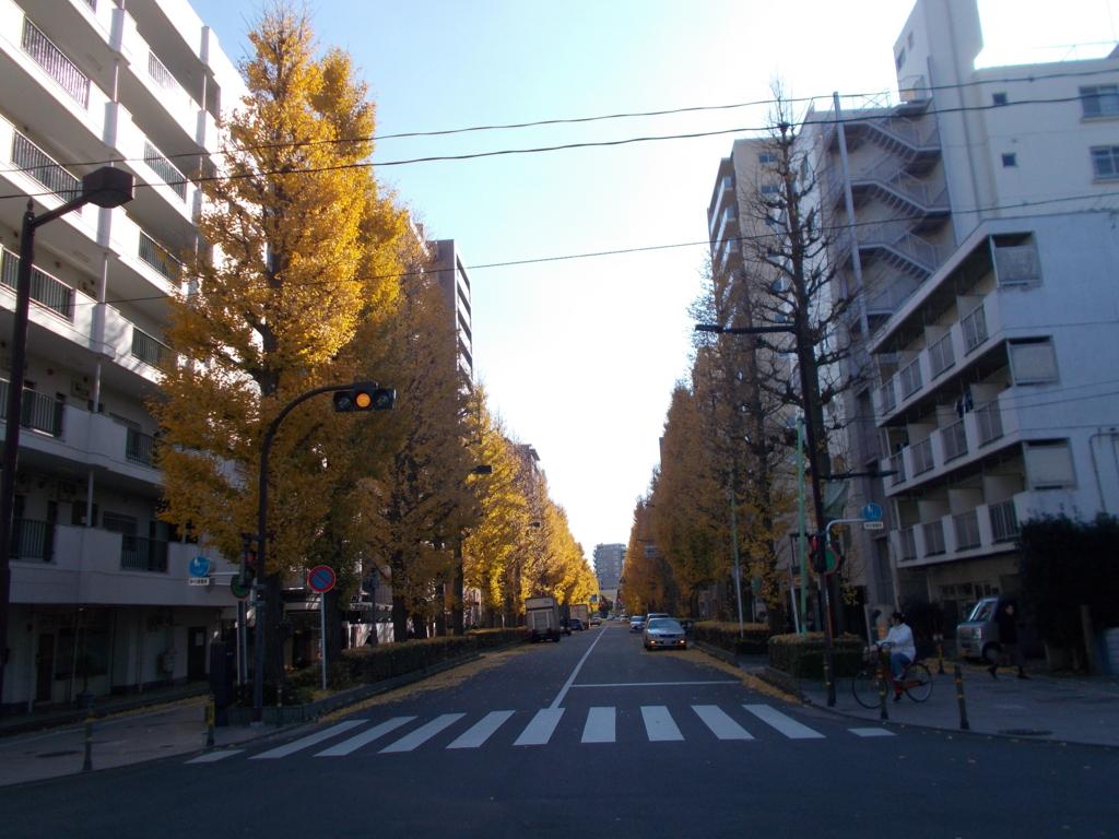 f:id:sokotujii:20161206124713j:plain