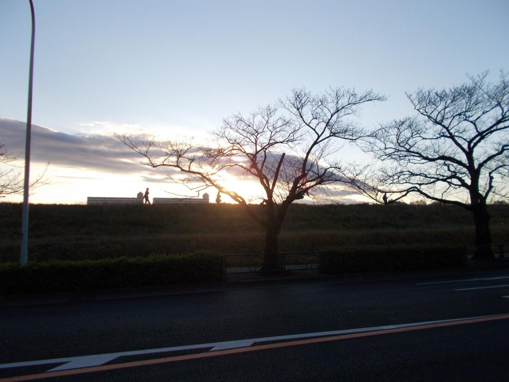 f:id:sokotujii:20161211154743j:plain