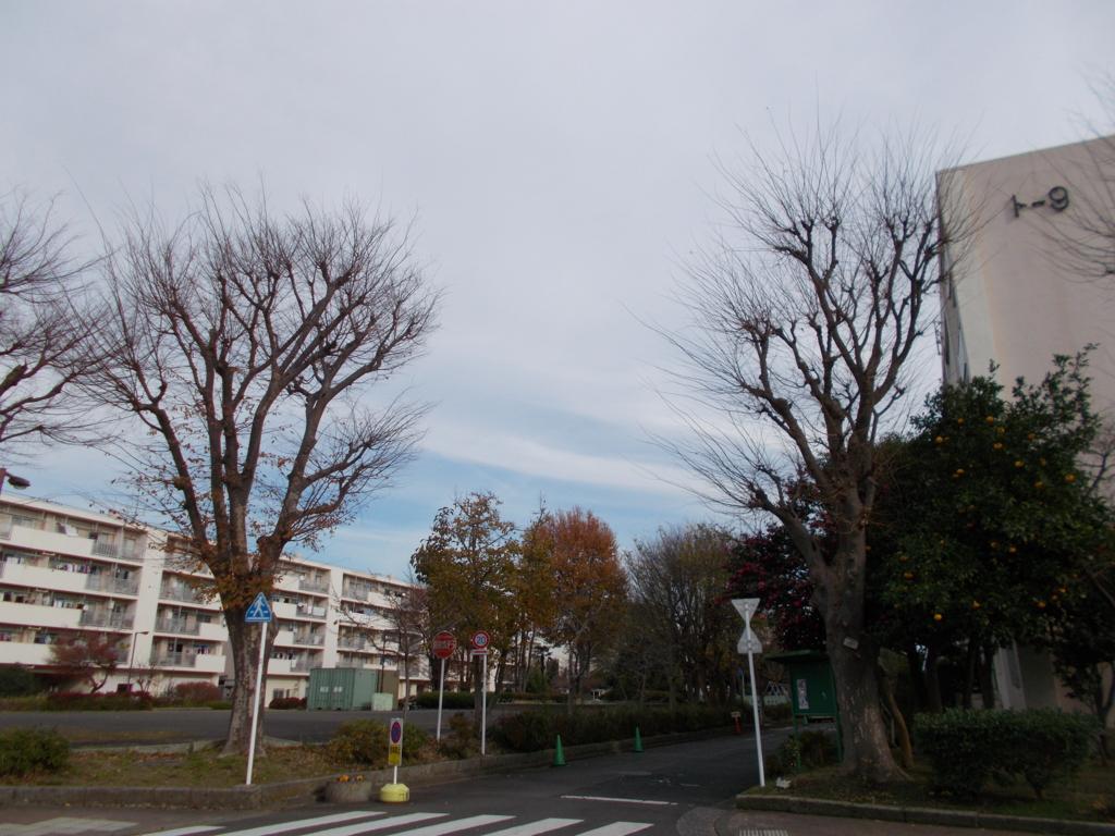 f:id:sokotujii:20161212132832j:plain