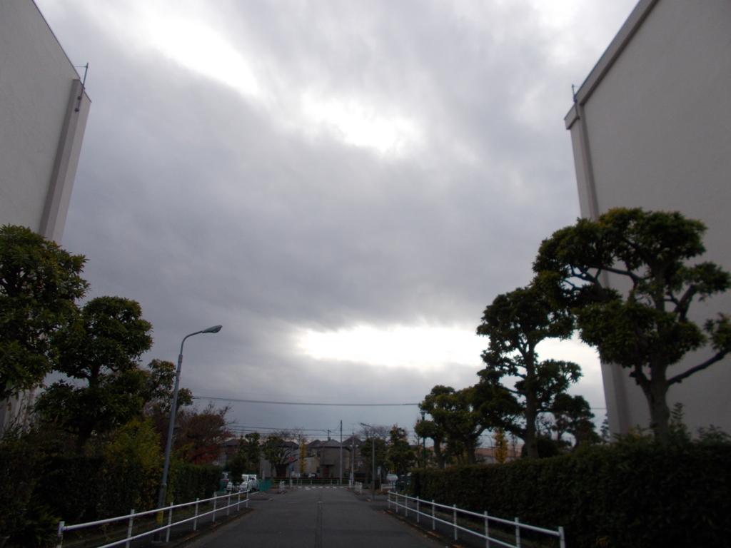 f:id:sokotujii:20161213125943j:plain