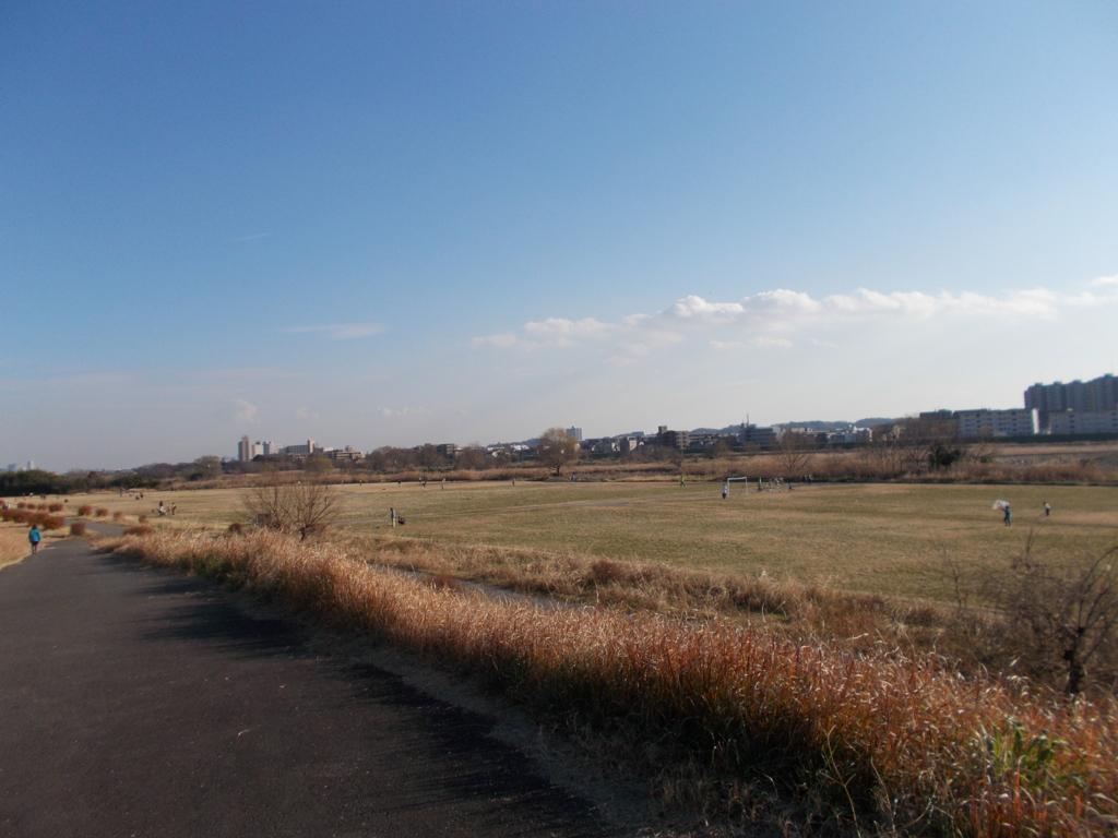 f:id:sokotujii:20170102143026j:plain