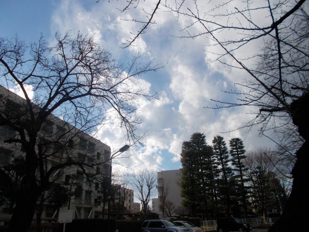 f:id:sokotujii:20170113144612j:plain