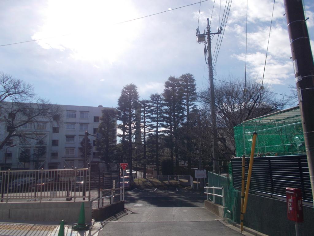f:id:sokotujii:20170124123459j:plain