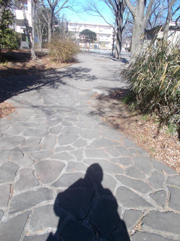 f:id:sokotujii:20170125121922j:plain