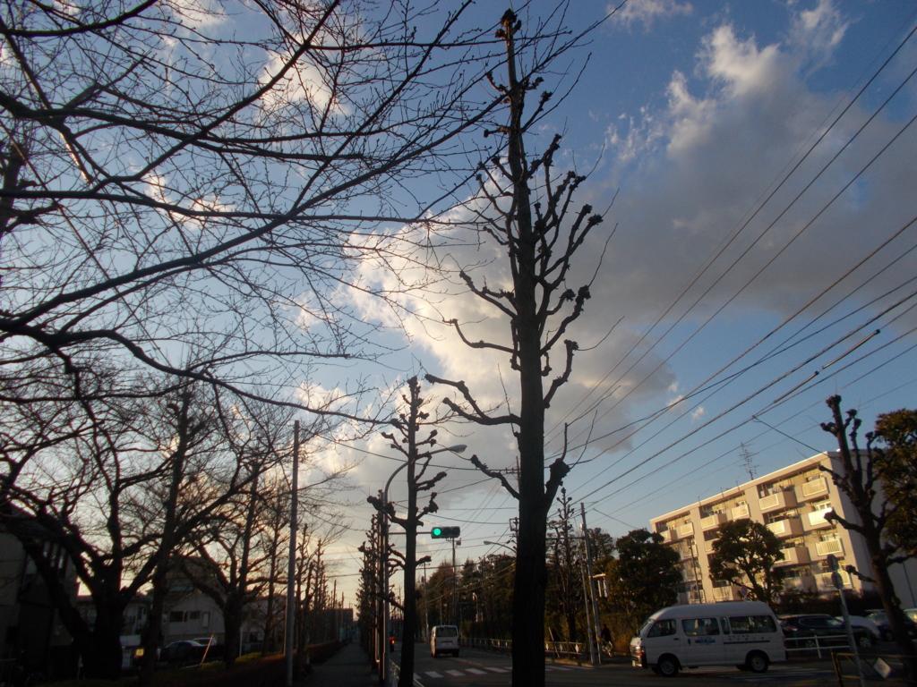 f:id:sokotujii:20170215165008j:plain