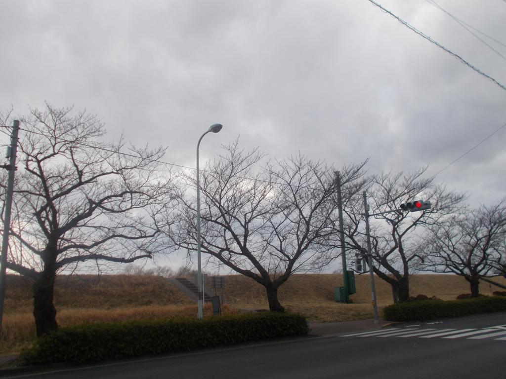 f:id:sokotujii:20170220153820j:plain