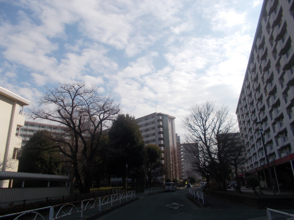 f:id:sokotujii:20170227143314j:plain