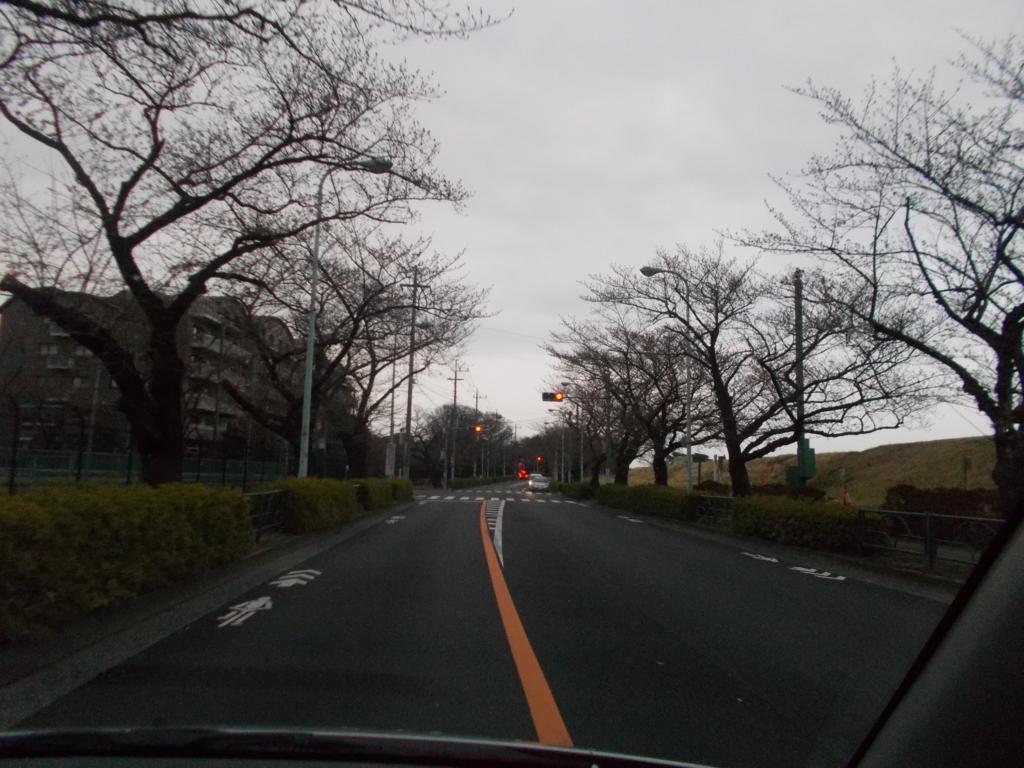 f:id:sokotujii:20170401174401j:plain