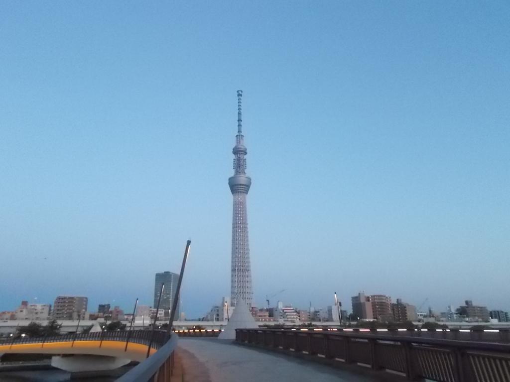 f:id:sokotujii:20170602190327j:plain