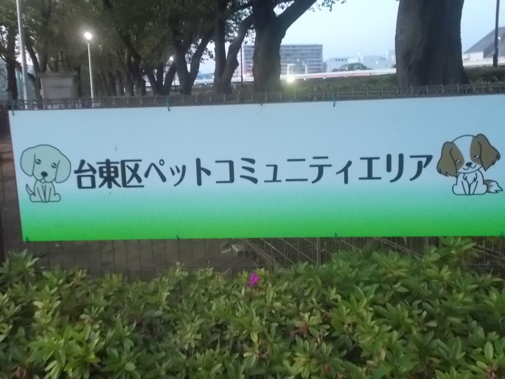 f:id:sokotujii:20170602190545j:plain