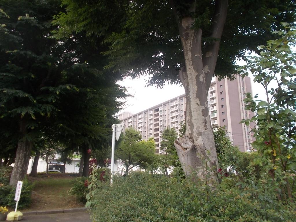 f:id:sokotujii:20170606155044j:plain