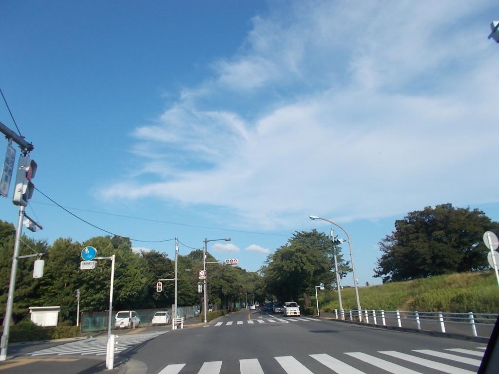 f:id:sokotujii:20170721170047j:plain
