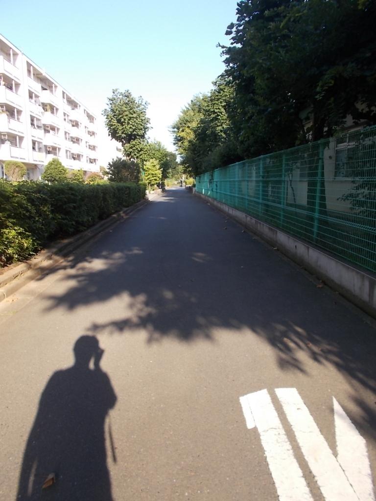f:id:sokotujii:20170731165158j:plain