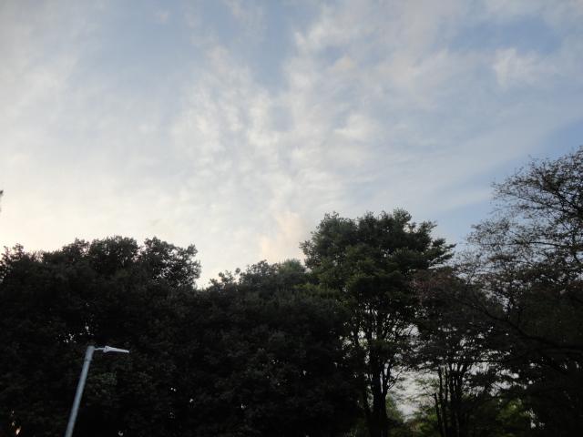 f:id:sokotujii:20180410174037j:plain