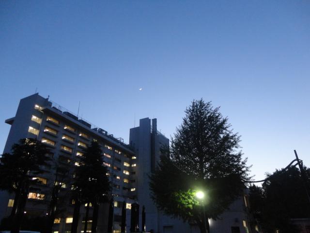 f:id:sokotujii:20180419183433j:plain