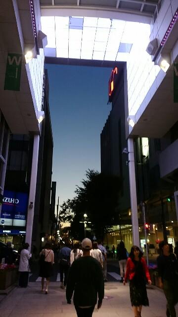f:id:sokotujii:20180520122545j:image