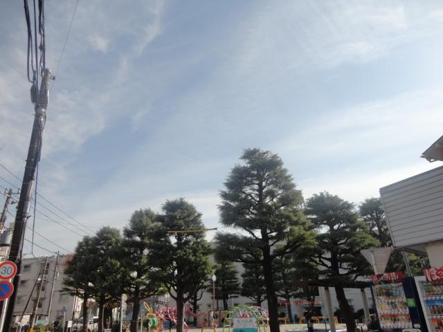f:id:sokotujii:20181201111326j:plain