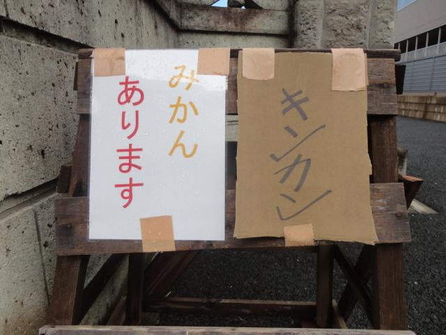 f:id:sokotujii:20181217111045j:plain