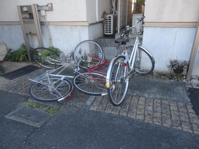 f:id:sokotujii:20181228142723j:plain