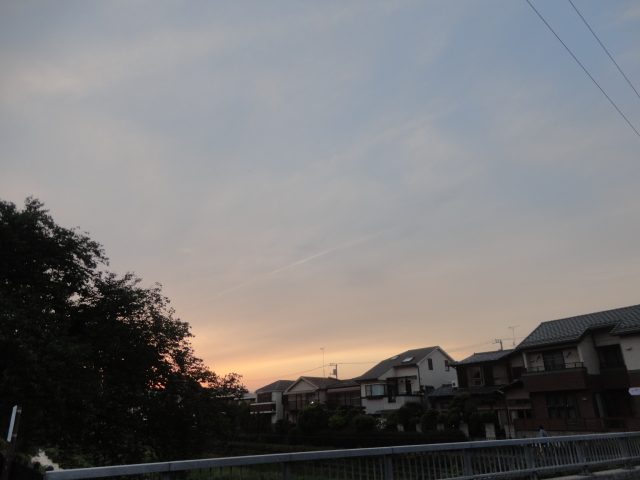 f:id:sokotujii:20190510181922j:plain