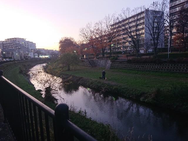 f:id:sokotujii:20191215203949j:image