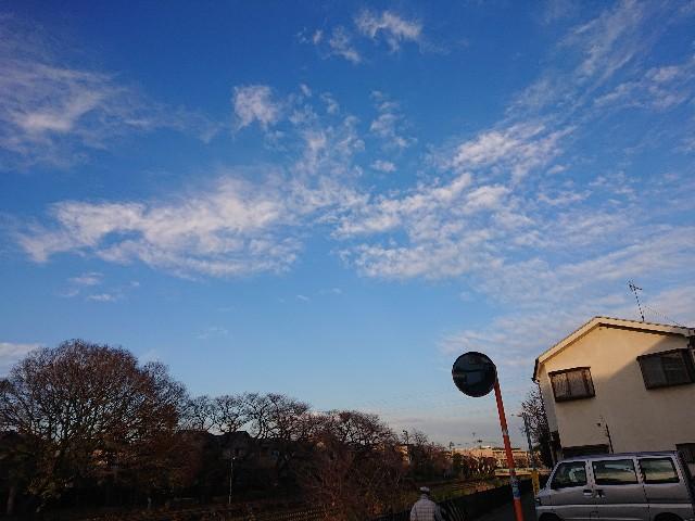f:id:sokotujii:20191215204046j:image