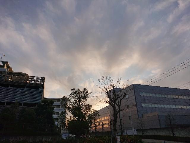 f:id:sokotujii:20191215204103j:image