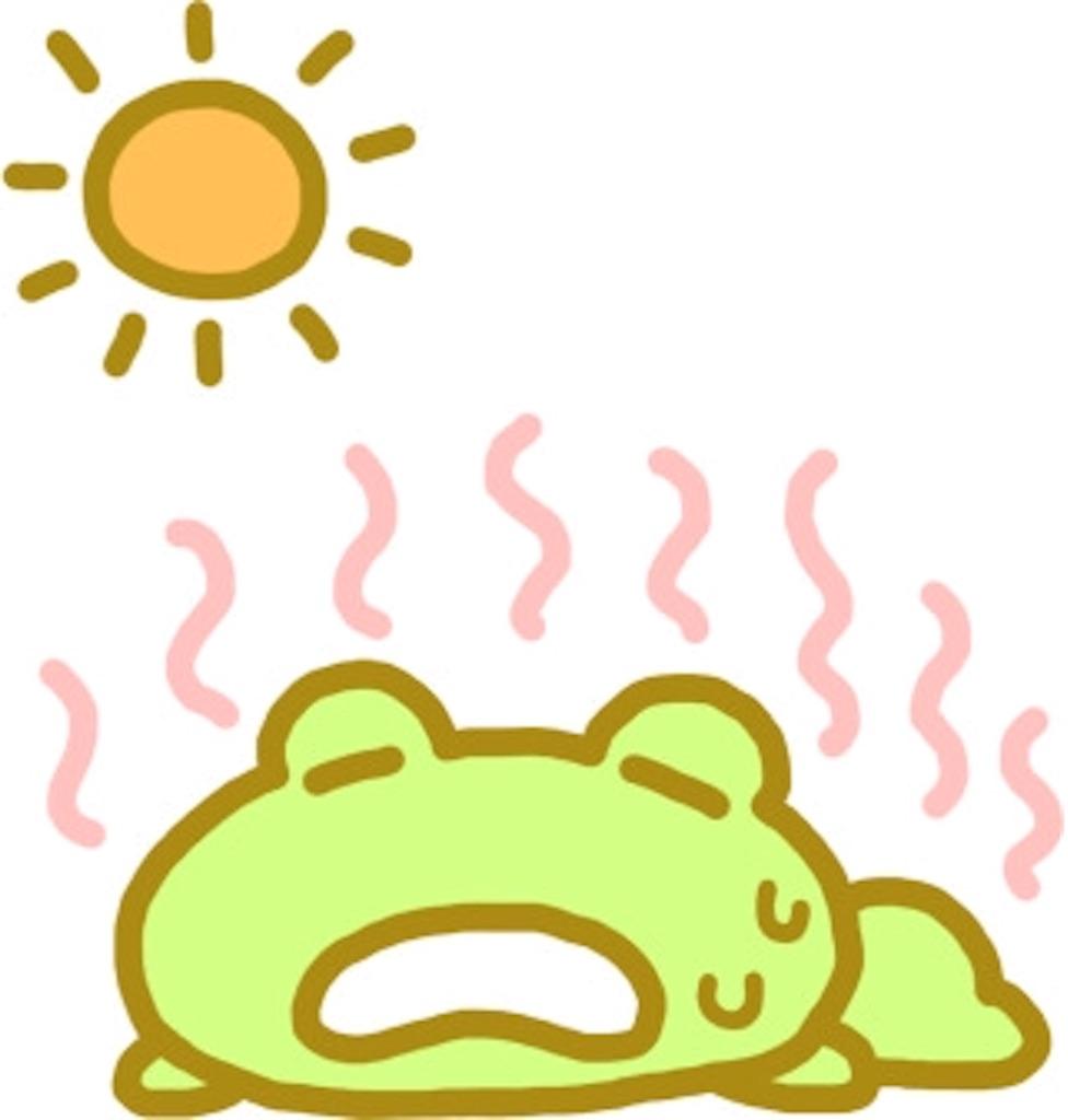 f:id:sol0520:20160721212407j:image