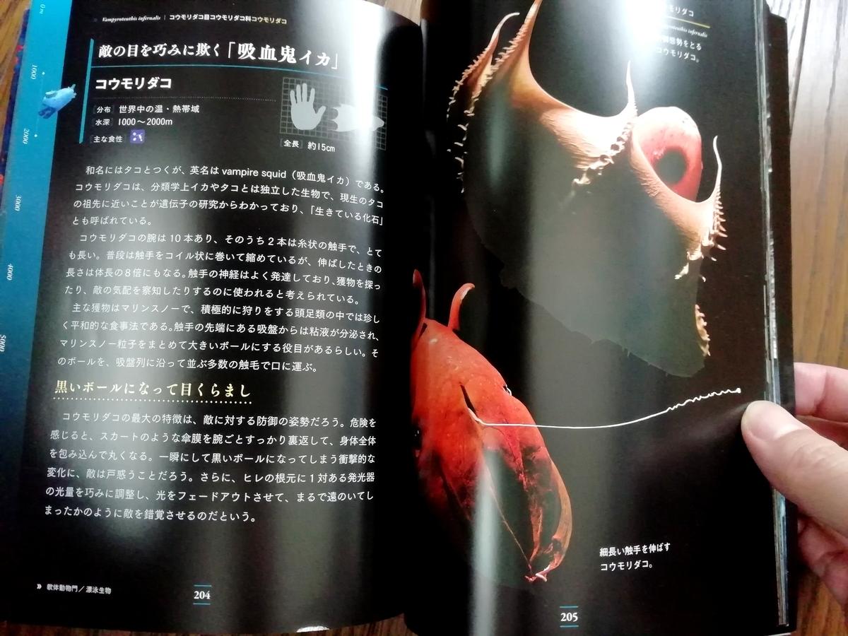 f:id:sola-chan:20201129141155j:plain