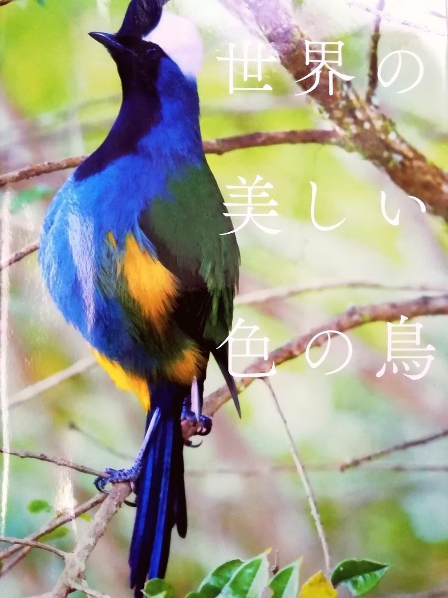 f:id:sola-chan:20201201151755j:plain
