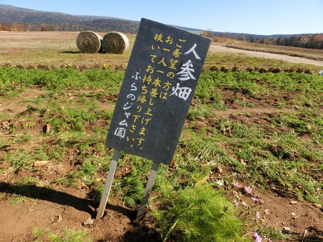 f:id:solachi:20141019113413j:plain