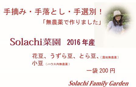 f:id:solachi:20161008225427j:plain