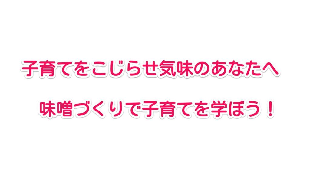 f:id:solidka2yuki:20170209083009j:plain