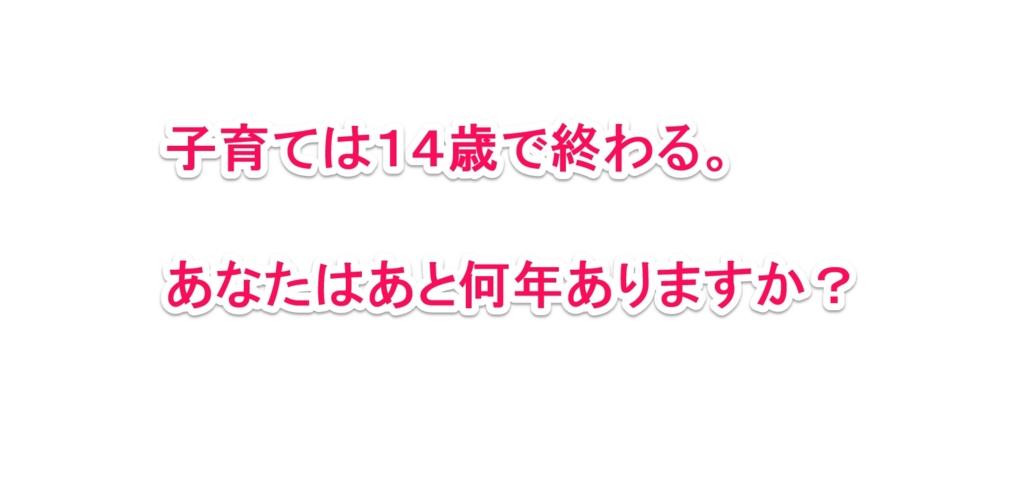 f:id:solidka2yuki:20170210145720j:plain