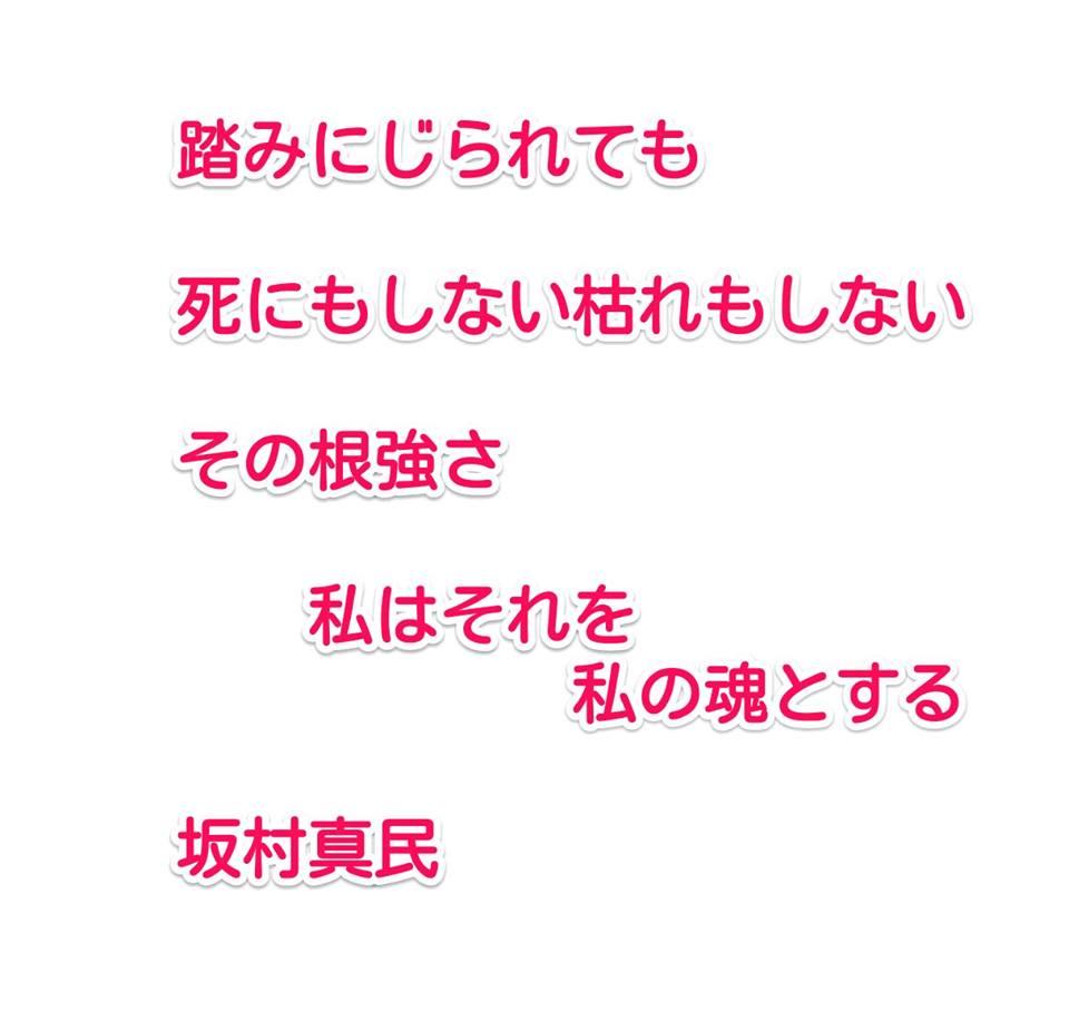 f:id:solidka2yuki:20170222074037j:plain