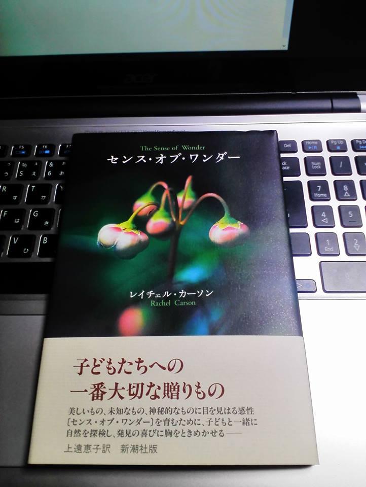 f:id:solidka2yuki:20170312215315j:plain