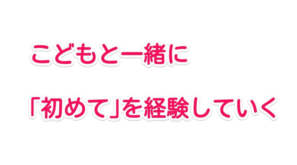 f:id:solidka2yuki:20170317082705j:plain